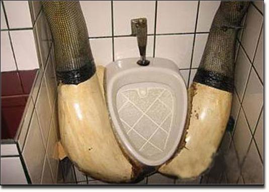 Toilettenbilder 6