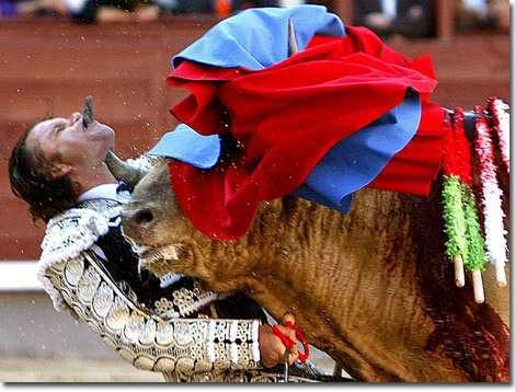 Torero Ouch!